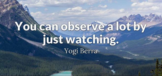 Observation5